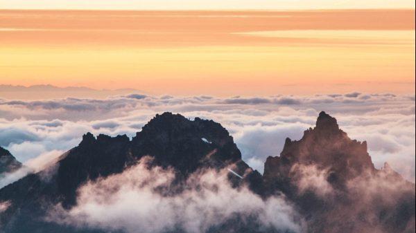 8 steps for pain-free cloud migration